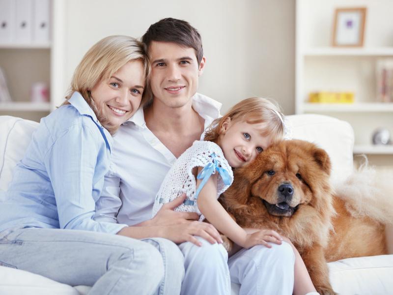 Comment la domotique assure la sécurité de votre famille